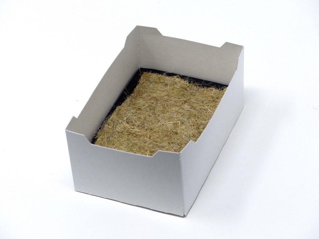 Microgreen Starterpaket mit Matte und Box